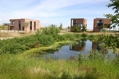 Bestaande woningen in het gebied Houtribhoogte